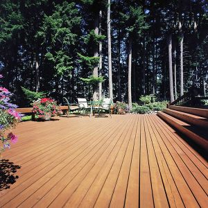 Flood-CWF-UV-Cedar